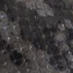 Pitone grigio