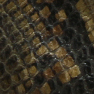 Green python printed leather