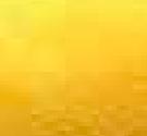 Camoscio giallo