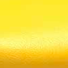 Nappa gialla